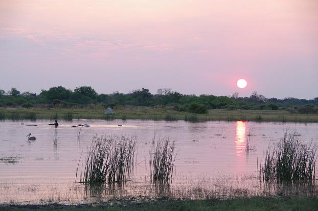 safari-botswana-blog-lavidaenelaire-25