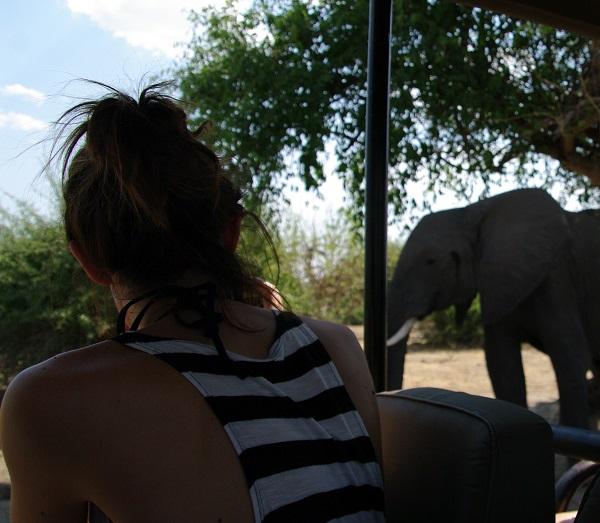 safari-botswana-blog-lavidaenelaire-8