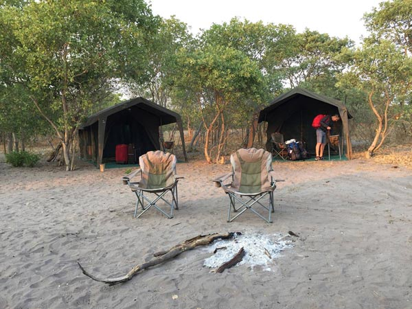 mopane-safaris